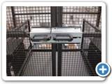 Mezzanine Goods Lift Gate Interlocks Corby